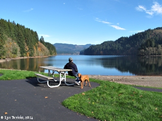 Image, 2014, Lake Merwin, Washington, click to enlarge