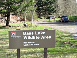 Image, 2014, Bass Lake Wildlife Area, North Bonneville, Washington click to enlarge