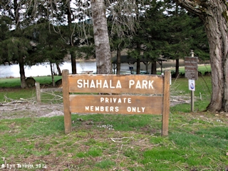 Image, 2014, Shahala Park, Skamania Landing, Washington, click to enlarge