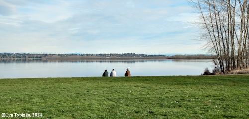 Image, 2014, Vancouver Lake, Washington,  click to enlarge