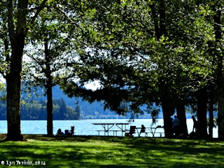 Image, 2014, Yale Lake, Washington, click to enlarge