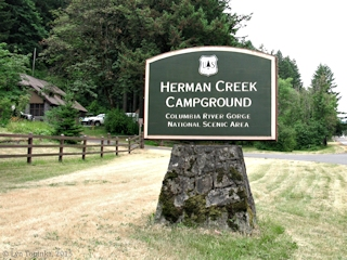 Image, 2015, Herman Creek Campground, Oregon, click to enlarge