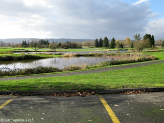 Image, 2015, Heron Lakes Golf Course, Oregon, click to enlarge