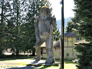 Image, 2015, Kid Valley Sasquatch, click to enlarge