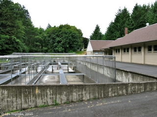 Image, 2015, Oxbow Fish Hatchery, Oregon, click to enlarge