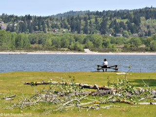 Image, 2015, Prescott Beach County Park, Oregon, click to enlarge