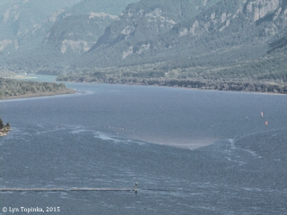 Image, 2015, Columbia River looking upstream from Cape Horn, click to enlarge