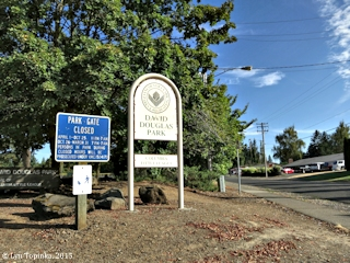 Image, 2015, David Douglas Park, Vancouver, Washington, click to enlarge