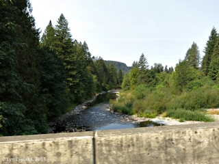 Image, 2015, Washougal River at Canyon Creek Road, click to enlarge