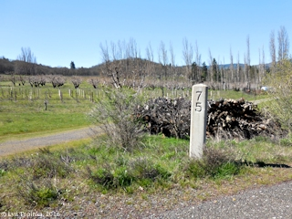 Image, 2016, Milepost Marker 75, Historic Columbia River Highway, Mosier, Oregon, click to enlarge