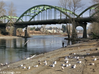 Image, 2016, Clackamas River and the Dr. John McLoughlin Memorial Bridge, Oregon, click to enlarge