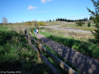 Image, 2016, Powell Butte, Oregon, click to enlarge
