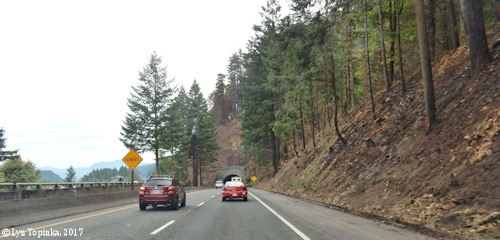 Image, 2017, Interstate 84, Eagle Creek Fire, click to enlarge