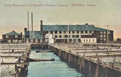 Penny Postcard, Union Fishermen's Cooperative Packing Co., click to enlarge