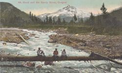 Penny Postcard, Sandy River, Oregon, click to enlarge